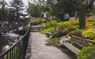 Hiring a Landscape Contractors: Benefits and What They Do